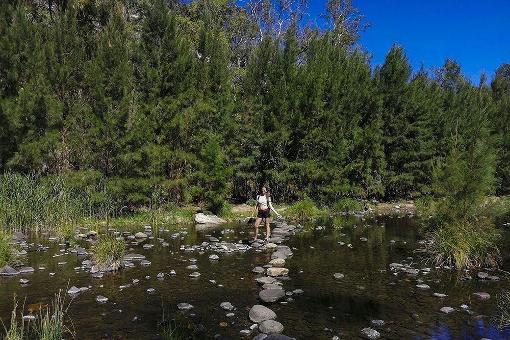 Carnarvon Gorge Trekking Creek