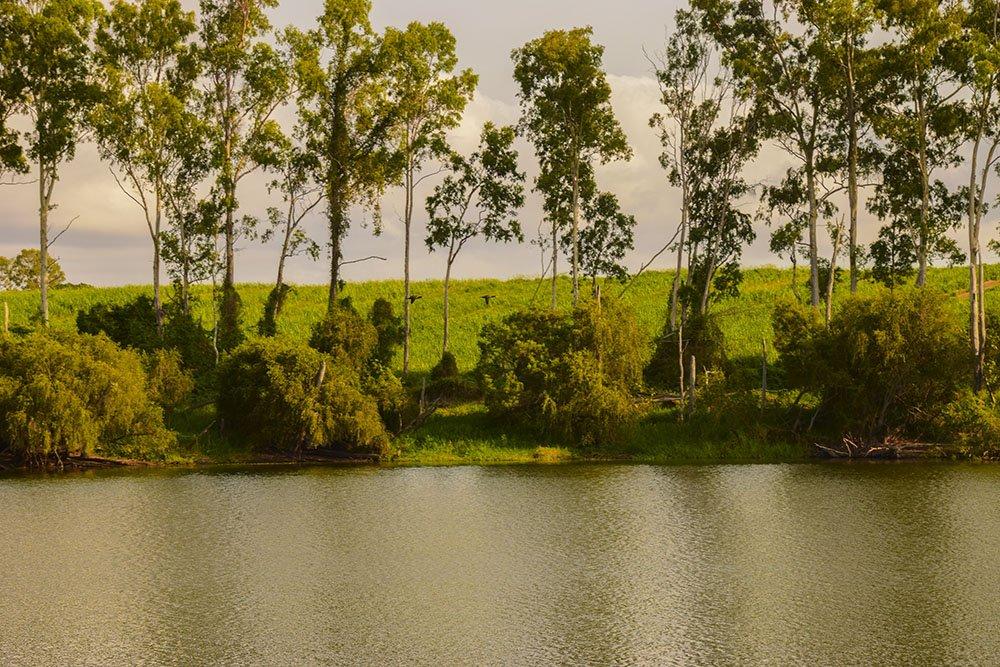 Vista sul fiume Burnet
