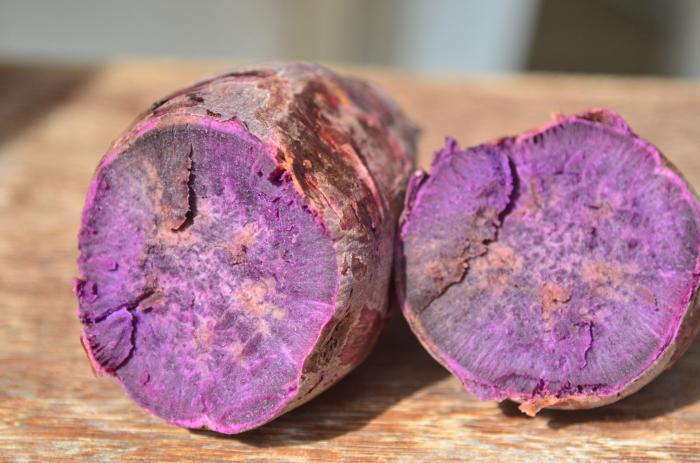 Batata-doce SCS370 Luiza se destaca por suas propriedades nutricionais
