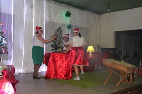 Natal APAE113