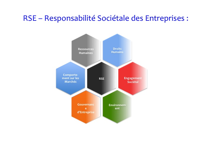 Marketing durable et Economie durable_1