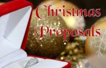 #WeddingCentral – Festive Season Proposals