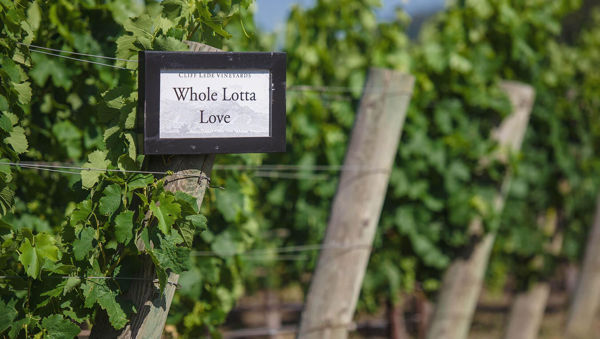 Whole Lotta Love vineyard sign