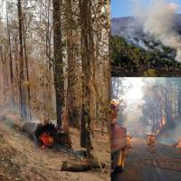 Bushfires in Australia and the Aboriginal Climate Adaptation Solution