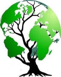 Green Tree Globe