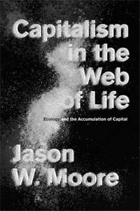 Moore - Capitalism in the Web