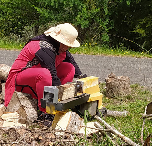 Fig. 5: Splitting logs to be made into biochar (Image: Nelson Whakatu Microforest)