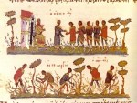 Byzantine_agriculture