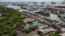 Jakarta harbor
