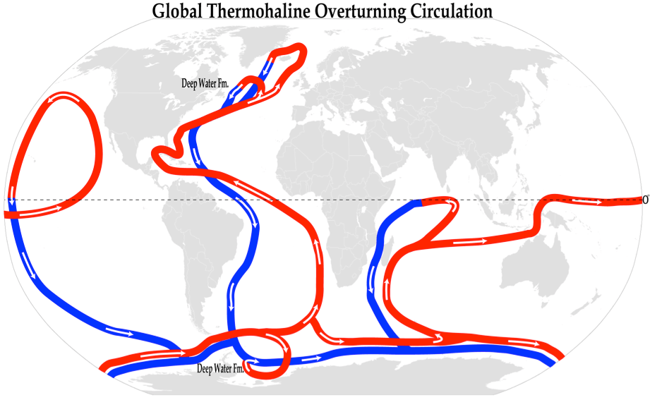 Figure 1. A simplified illustration of global THOC where red lines indicate warm surface waters heated mostly at tropical and mid-latitudes, while blue lines indicate the colder, more dense deep water. Deep-water formation is marked in high latitudes around Greenland and Antarctica.