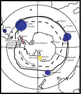 Elephant Seal Colonies Exp 2006