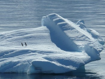 Antarctica iceberg penguins photo: Pixabay