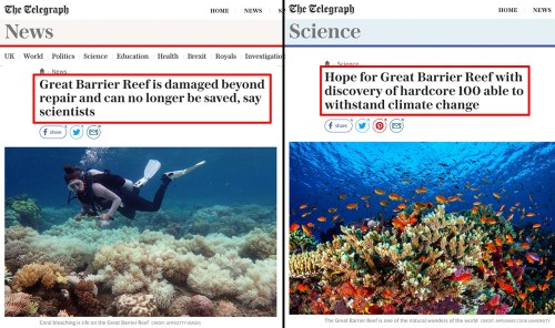 Great Barrier Reef More Resilient To Climate Change Than Previously Thought | Science and Technology