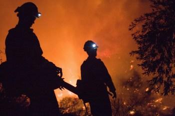 firefighter wildfire firemen