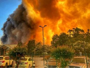 australia bushfires NSW