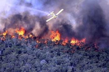 australia wildfires water plane