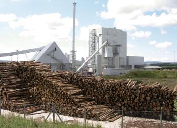 wood burning power plant