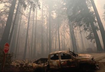 big basin state park fire