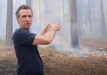 newsom wildfires