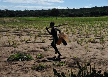 madagascar drought
