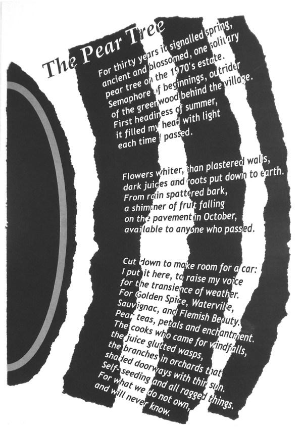 The Window. Text: Clare Crossman © 2016; Illustration: Victor Ibanez