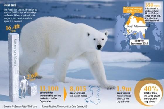 polar-peril