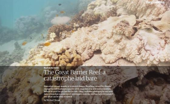 guardian-reef-catastophe