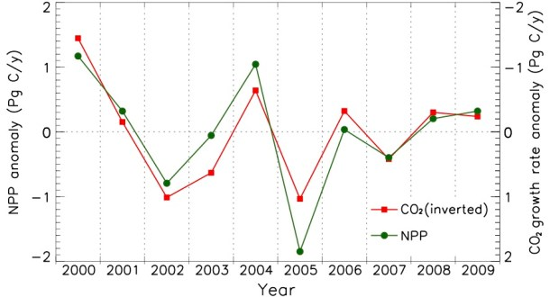Interannual shifts in plant productivity (green line) fluctuated in step with shifts in atmospheric carbon dioxide (red line) between 2000 through 2009. Credit: Maosheng Zhao and Steven Running