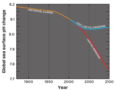 Modelled global sea-surface pH from 1870 to 2100. The blue line reflects estimated pH change resulting from very low CO2 emissions to the atmosphere (IPCC Representative Concentration Pathway, RCP* 2.6). The red line reflects pH from high CO2 emissions (the current emissions trajectory, RCP* 8.5). Credit: Adapted from Bopp et al., 2013 (reference 9).