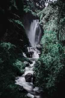 wood landscape water mountain