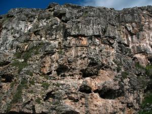 CaymanBrac
