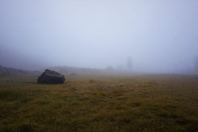 Chiwaukum Foggy Meadow