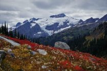 Clark and Pilz Glaciers on Clark Mountain.