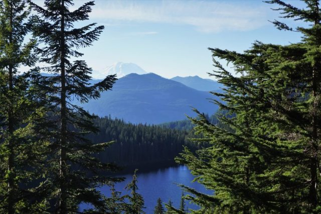 Mt. Rainier and Oallie Lake
