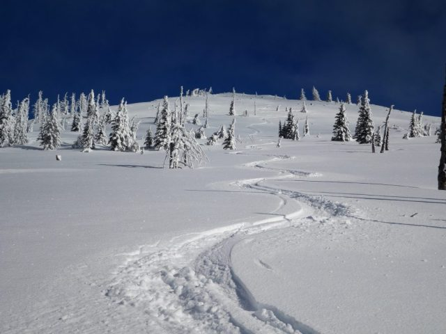 Sherman Peak Tracks