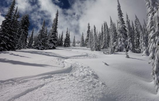 Sherman Pass Ski Tour