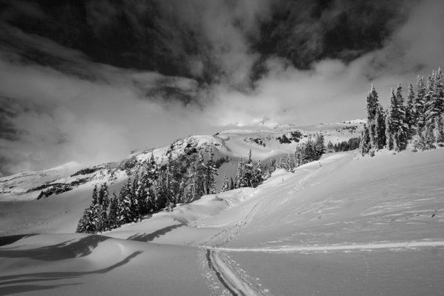 Mt. Rainier Decapitation