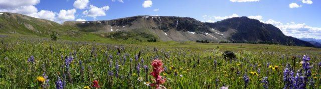 Whistler Basin