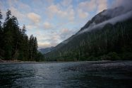Sublime morning on the Hoh River.