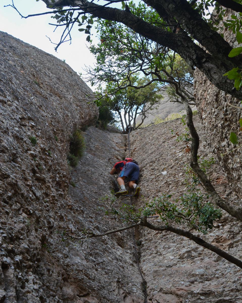 Travessa Agulles i Frares Encantats, Montserrat 39