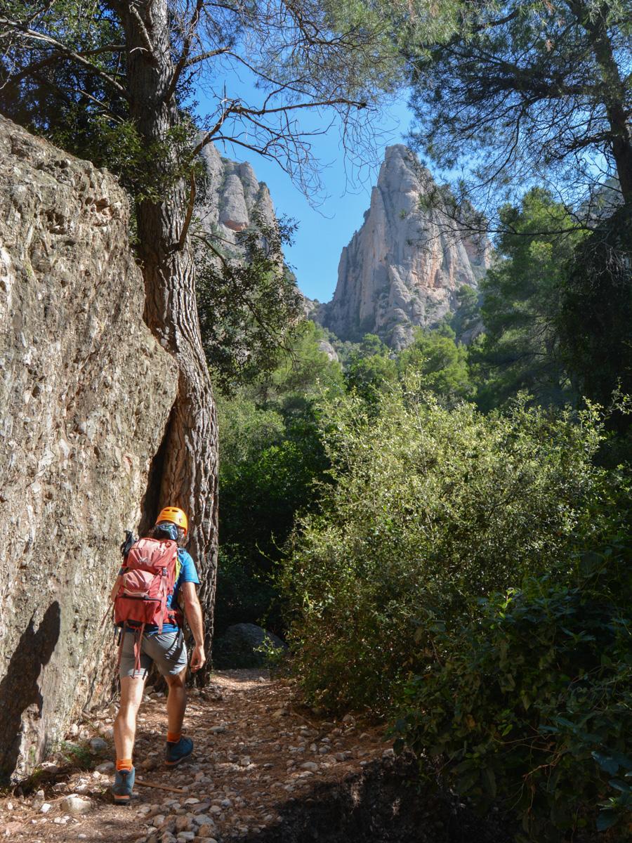 Cami de les Dames, Montserrat 3