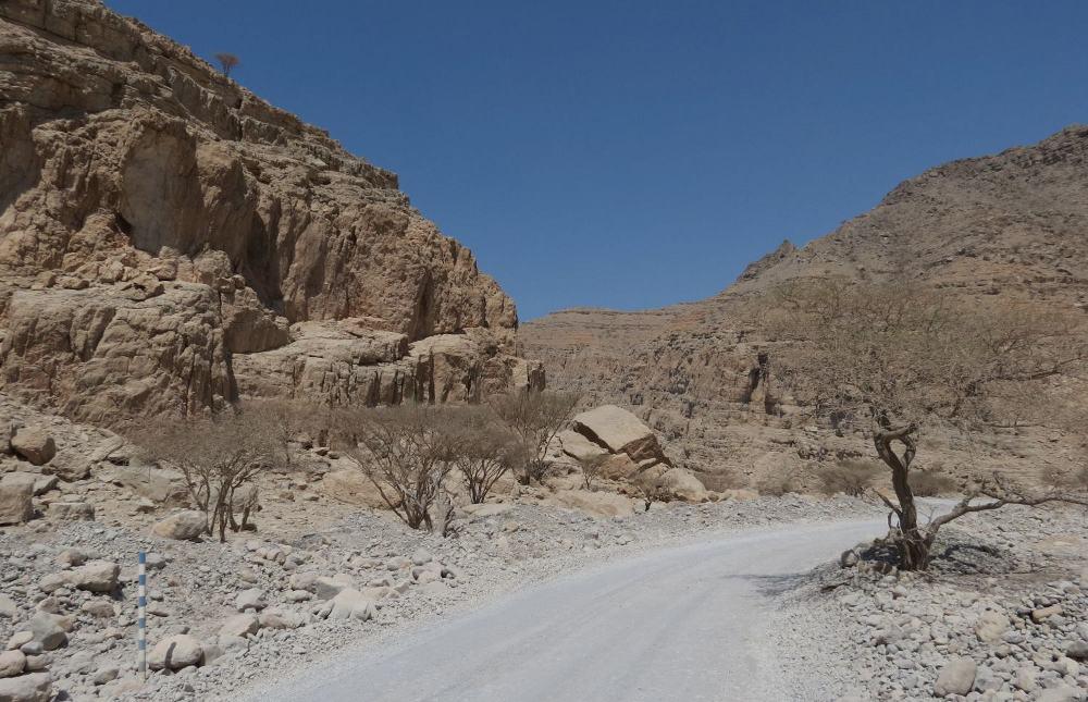 Roadside area