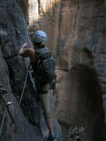 Snake canyon, Jebel Akhdar 61