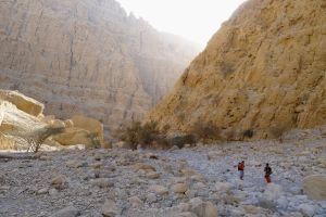 Little Princess, Wadi Naqab, Émirats 29