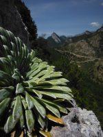 Via Africa a la Paret del Grau, Coll de Nargo, Espagne 14
