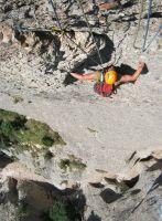 Drac Gos a l'agulle de Can Jorba, Montserrat, Espagne 13