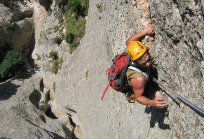 Drac Gos a l'agulle de Can Jorba, Montserrat, Espagne 15