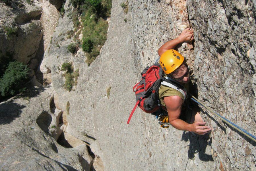 Drac Gos a l'agulle de Can Jorba, Montserrat, Espagne 2