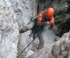 Drac Gos a l'agulle de Can Jorba, Montserrat, Espagne 3