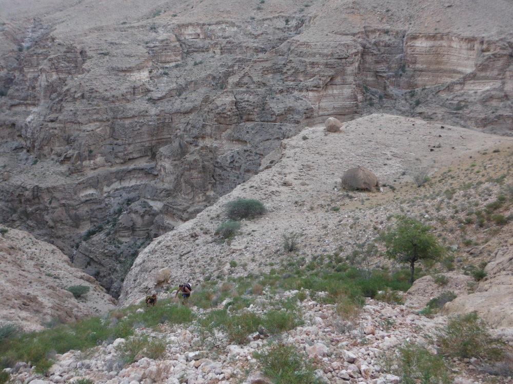 Wadi Ta'ab, Hajar Oriental 89